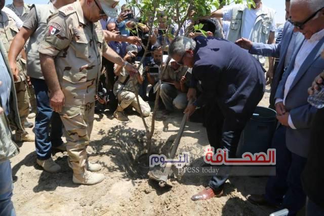 عبد العزيز : يطلق مشروع زراعة الأشجار بسهل الطين ببورسعيد
