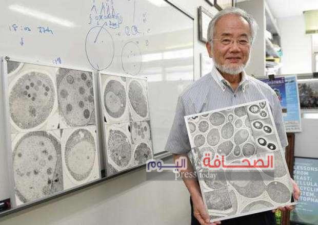 """تعرف على: جوائز اليابانى"""" يوشينور يأوسومي """"الحاصل على نوبل فى الطب"""