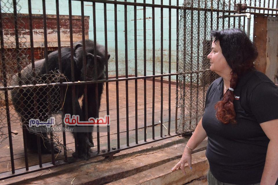 بالصور .. حدائق الحيوان تنعى خبيرة سلوكيات الحيوانات البرية