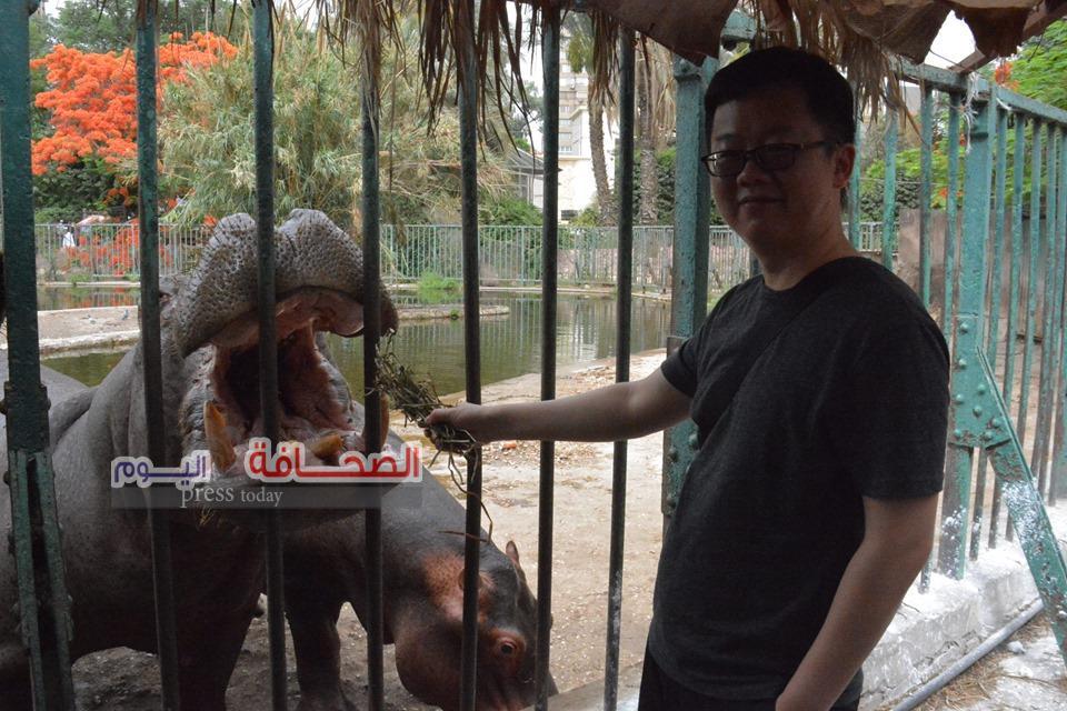 بالصور ..خبير صينى بالحيوانات البريه يشيد بحديقة حيوان الجيزة