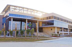جامعة نيوجيزة