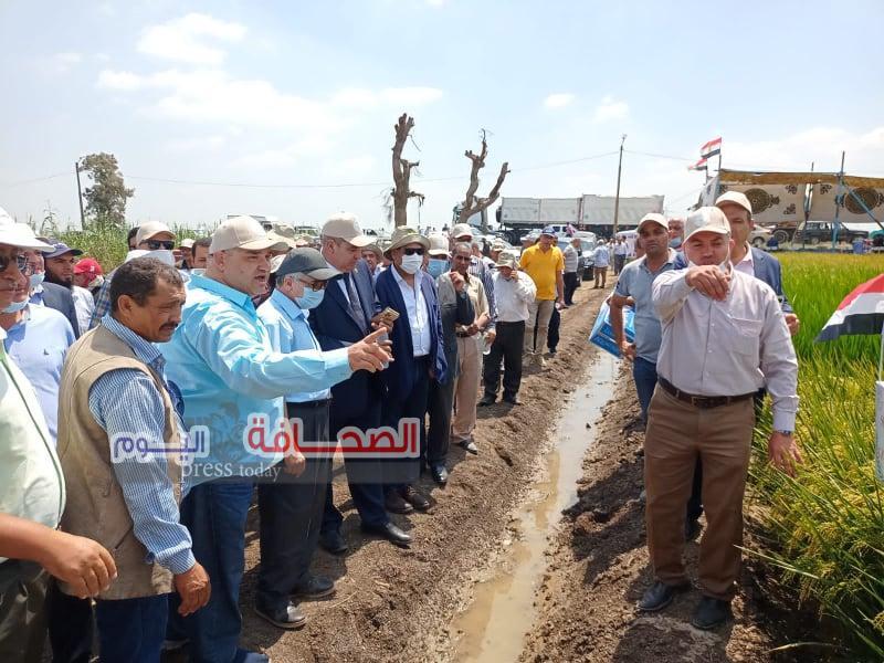 الزراعة تنظم يوم حقلي للأرز والذرة الشاميه بمحطة بحوث سخا بكفر الشيخ